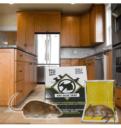 Professional Rat Glue Trap